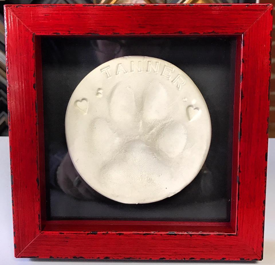 Dog Memorial Shadowbox Frame Denver | FastFrame of LoDo - Expert ...